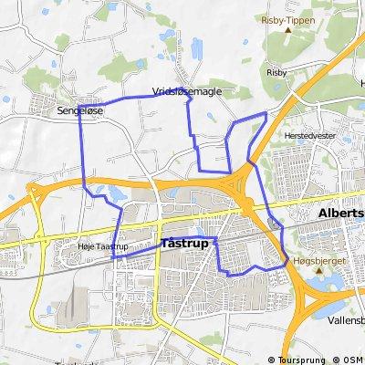 HT half marathon 22km