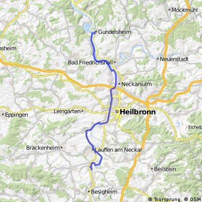 Neckartal-Radweg von Kirchheim nach Gundelsheim