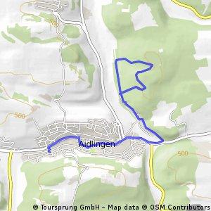 2 Mal Den Gleichen Trail Bis Auf Den Aufstieg