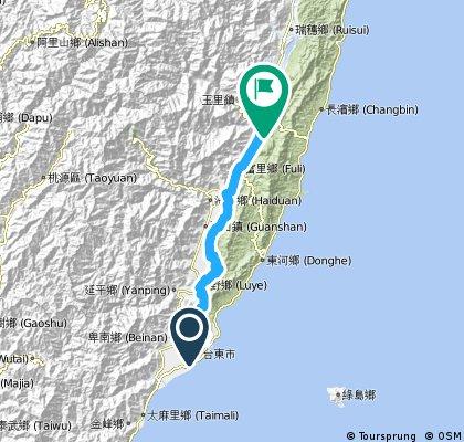 D1 台東車站-縣道197-花蓮玉里