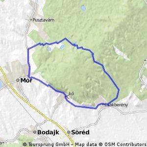 2014 06 16 Csakberény 31.55 km