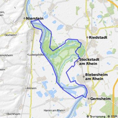 Gernsheim Oppenheim loop