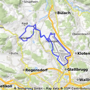 Lange Ausfahrt durch Dielsdorf