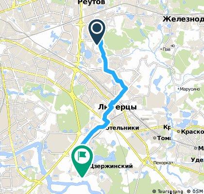 Новокосино-Дзержинский