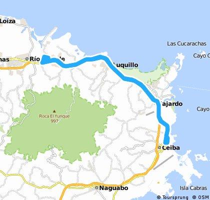 Rio Grande A Ceiba Tiendita