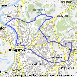 Raynes Park-Richmond Park-Ham-Kingston-Raynes Park