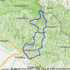 Niederalteich-Ulrichsberg-Regen-Bodenmais-Brennes-Niederalteich