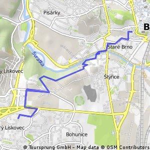 Brno, Anenská - Bohunice a zpět, pěšky
