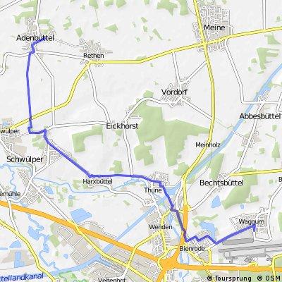 Ein Weg nach Adenbüttel