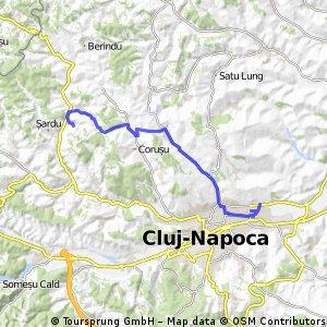 Cluj - Sanpaul
