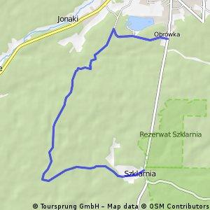 Rowerowy szlak zielony w Lasach Janowskich