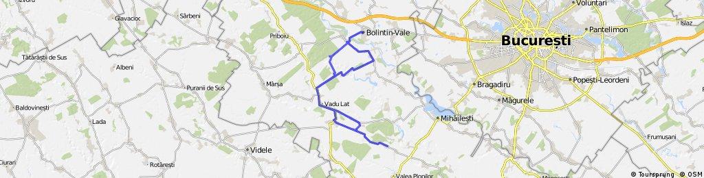 Bolintin Vale - Clejani - Bulbucata