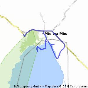 dagtocht lake manyara 50k
