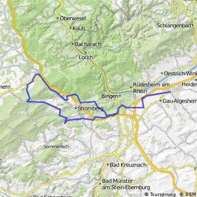 003r Ingelheim - Ellern - Rheinböllen - Ingelheim