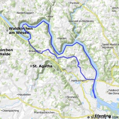Rundfahrt Donau (Brandstatt - Schlögener Schlinge)