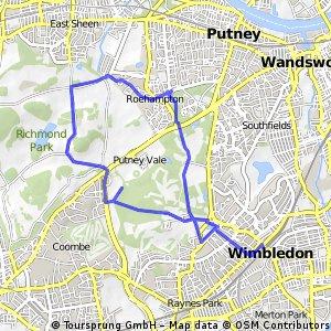Wimbledon Common (AA route)