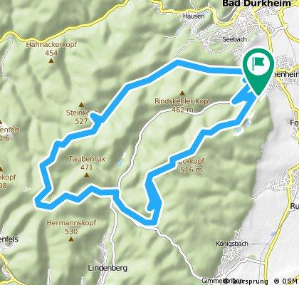 Wachenheim-Lambi-Eckkopf-Wachenburg-Hexenstein 30km 700hm