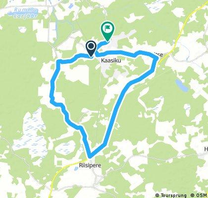 ride from Kernu to Kaasiku