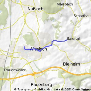 Alternativer Radweg von Baiertal zum Schulzentrum Wiesloch