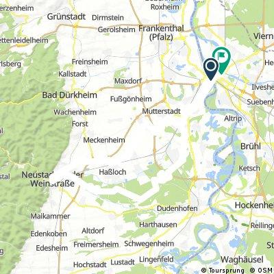 Mannheim/Limburgerhof/Speyrer Wald/Neustadt