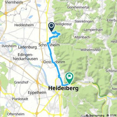 Ausfahrt von Hirschberg nach Heidelberg