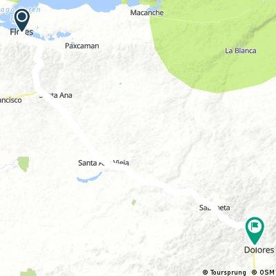 route 61: Flores - Dolores