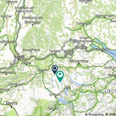 MT 1 Freiburg - Basel - Wohlen
