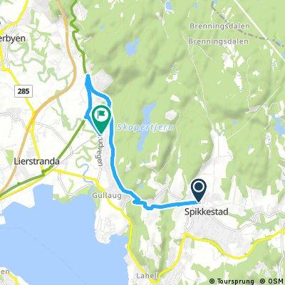 Brief ride from Spikkestad to Gullaug