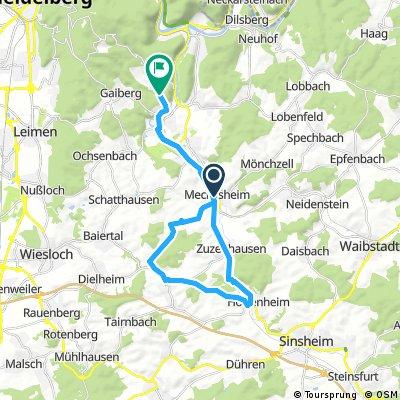 Radrunde von Meckesheim nach Bammental