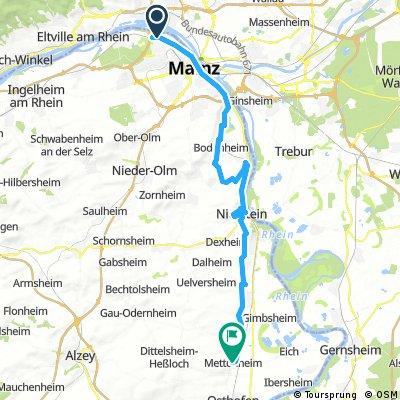 mf66_2h52min52km432hm_RTW-Mz-Mettenheim