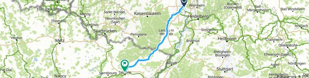 Mannheim-Wissembourg-Saverne 2016