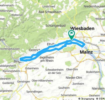 Wiesbaden-Eltville-Bingen-Petersaue