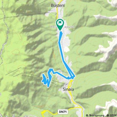 Traseu Poiana Tapului-Cota 1.400
