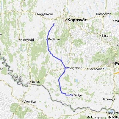Sellye-Szigetvár-Bárudvarnok (4/7 etap)