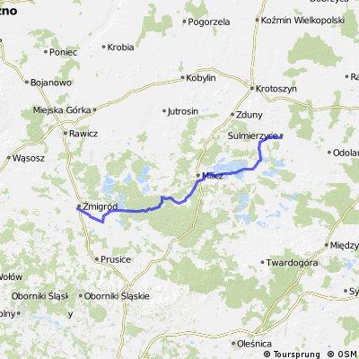 Trasa kolejki Żmigród - Sulmierzyce
