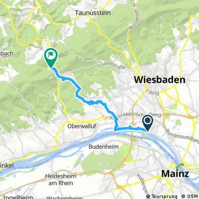 Rheinsteig 01. Etappe Wiesbaden-Biebrich - Schlangenbad (Süd-Nord)
