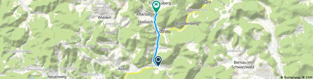 Geschwend-Wasserfälle