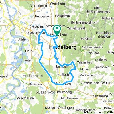 pe - Dossenheim Gauangeloch rund