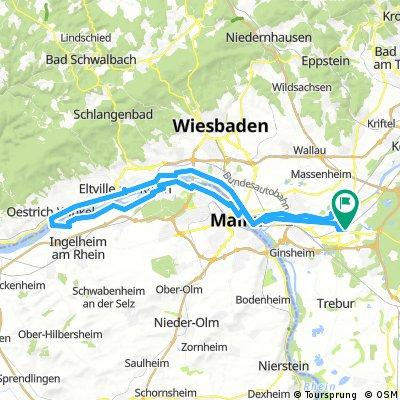Eltville-Winkel-Ingelheim-Rüsselsheim