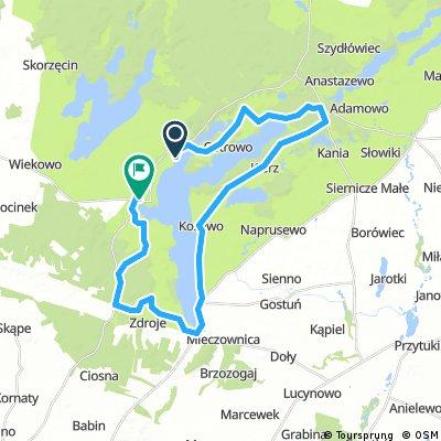Wokół jeziora Powidzkiego