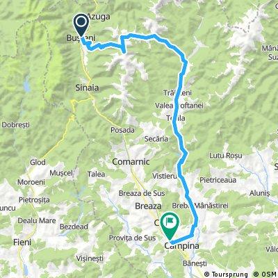 Busteni - Zamora - Orjogoaia - Traisteni - Paltinu - Campina