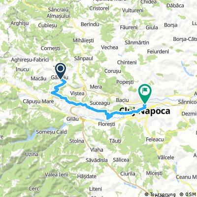 Garbau - Cluj