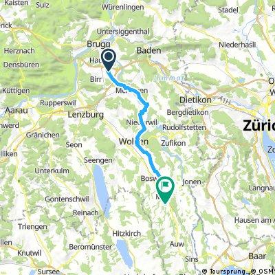 Birrfeld-Muri