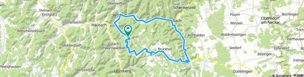 Kirnbach, mosenmättle,fohrenbühl Turm,  schramberg Burg, zurück mit dem Radweg
