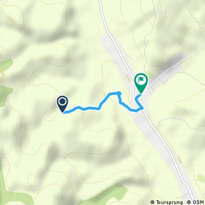 Short bike tour through Sichevita - Gornea