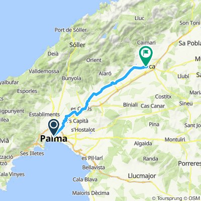 Mallorca: Palma-Inca (II)