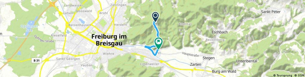 Brief ride from Rosskopf to Freiburg