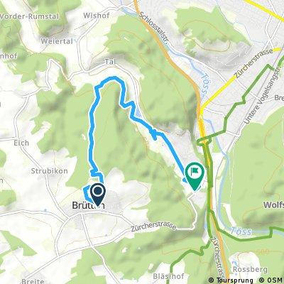 Kurze Radrunde von Brütten nach Winterthur