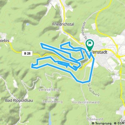 Finkenberg Schwarzerstich FDS