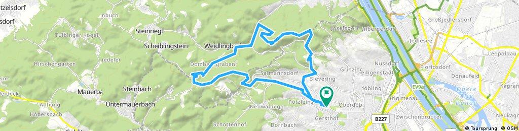 161023 wienerwald